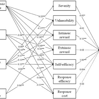 Schematic presentation of the Protection Motivation Theory
