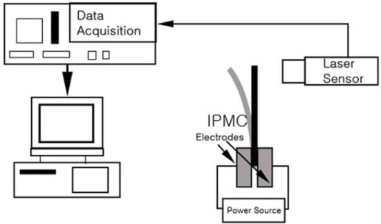 Fig. 8 (a) Schematic diagram of blocking force test setup
