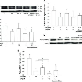 expressions of MMP-2 and MMP-9 proteins in hT-29 cells as