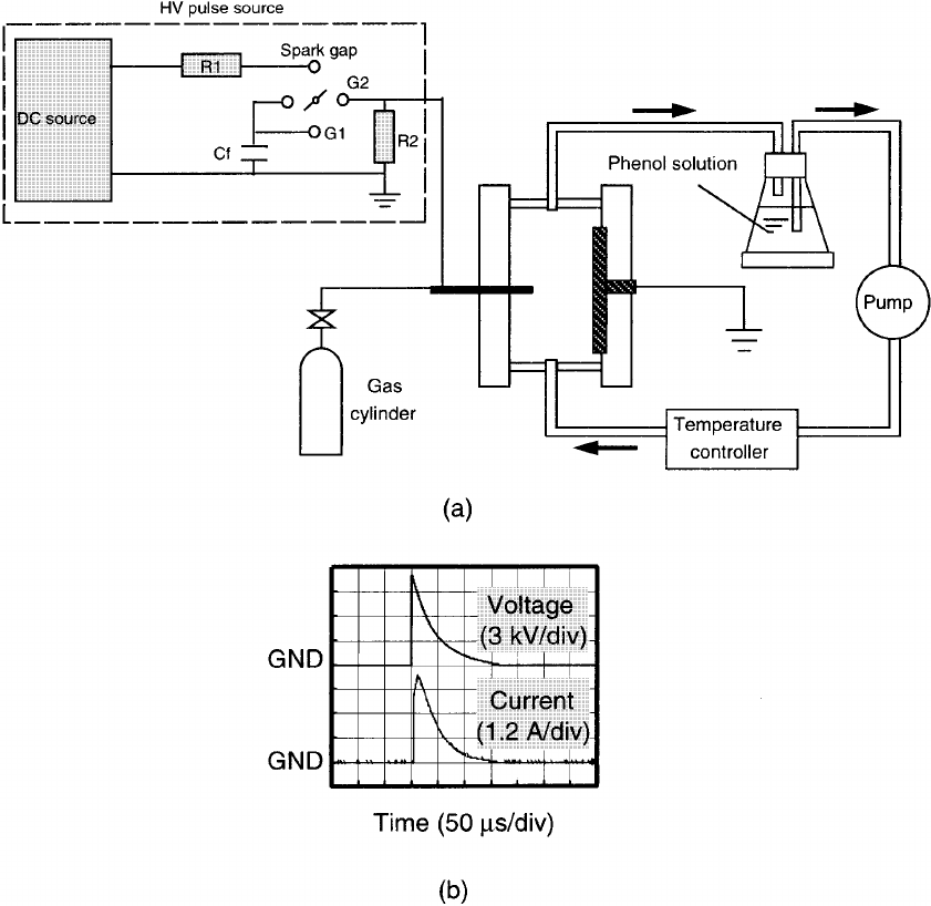 Schematic diagram of the (a) experimental apparatus and (b
