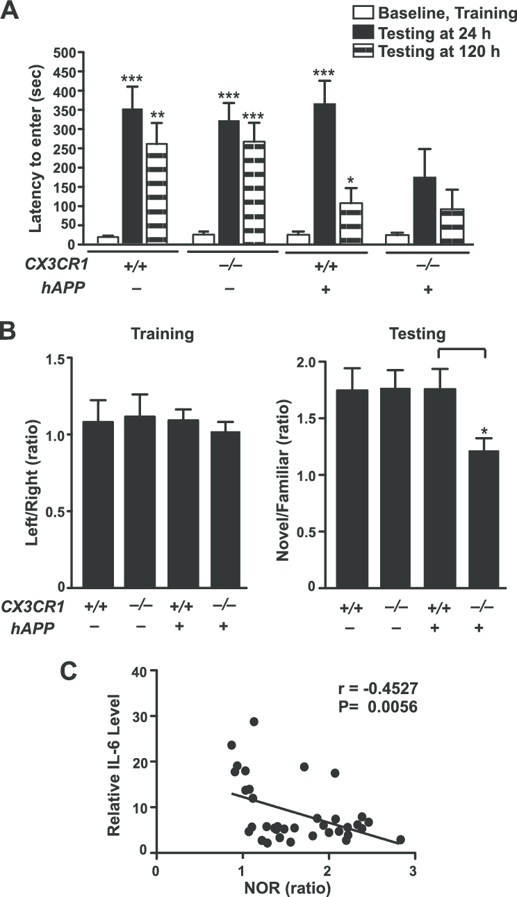 CX3CR1 ablation exacerbates cognitive deficits in hAPP