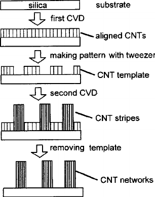 A schematic illustration of the two-step CVD process for