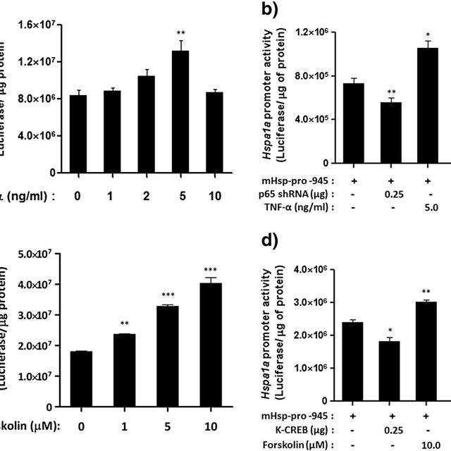 Effect of ischemia-like conditions on transcriptional up