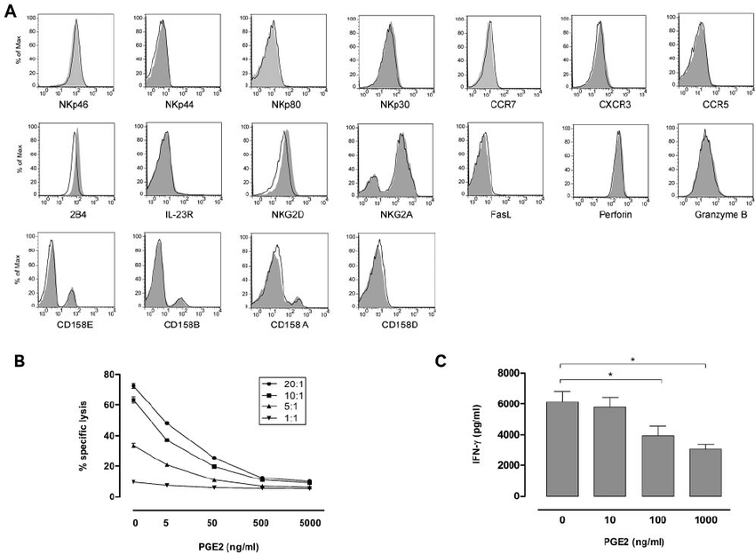 Direct effect of PGE2 on NK-cell phenotype, cytotoxicity