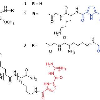 (PDF) Nucleobase-Guanidiniocarbonyl-Pyrrole Conjugates as