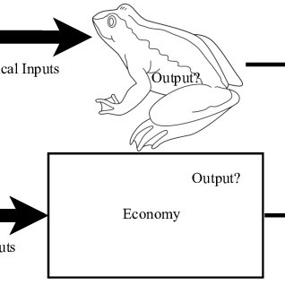 (PDF) Rethinking Economic Growth Theory from a Biophysical