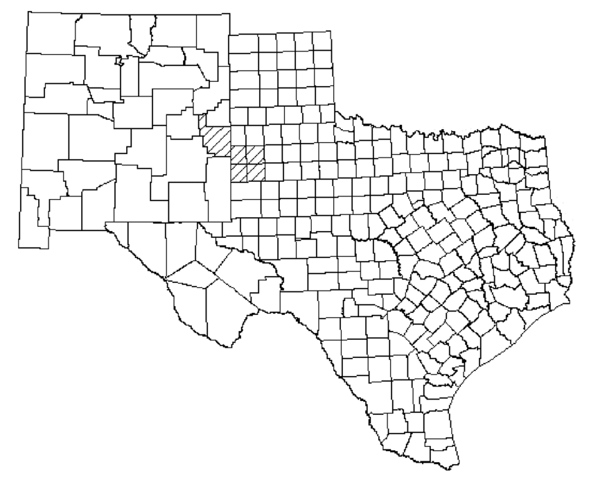General outline of the New Mexico and Texas lesser prairie