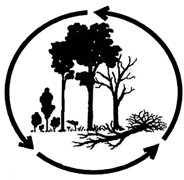 Figure 18. Obtaining the value of biodiversity