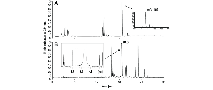 HPLC chromatograms of water extract of garlic (A) and