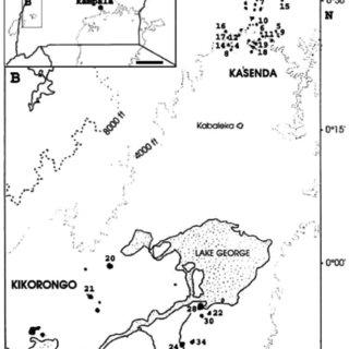 (PDF) Subfossil representation of aquatic invertebrate