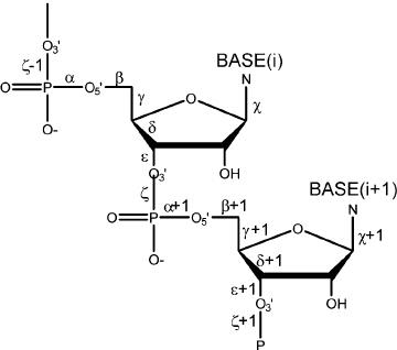 A chemical diagram of a dinucleotide fragment shows de