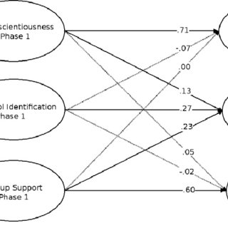 (PDF) Predicting social identification over time: The role