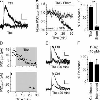 (PDF) Nonexocytotic serotonin release tonically suppresses