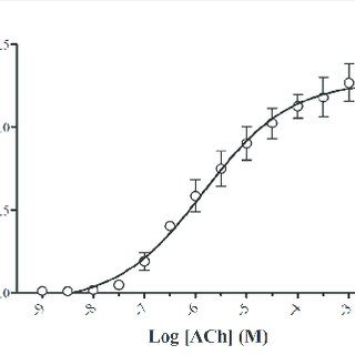 (A) Polymerized actin in TSLP or PDGF-stimulated HASM