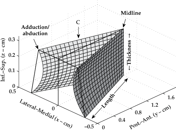 3 3d representation of the medial surfaces of the vocal