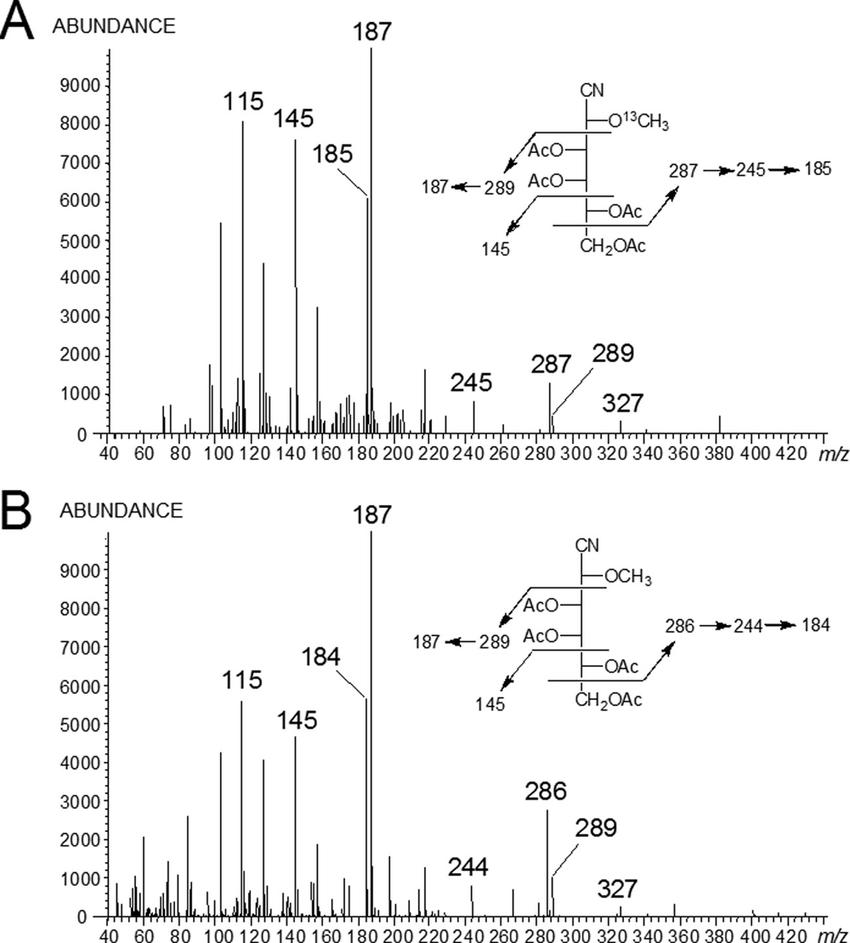Electron impact mass spectra of 2-O-methylgalactose PAAN