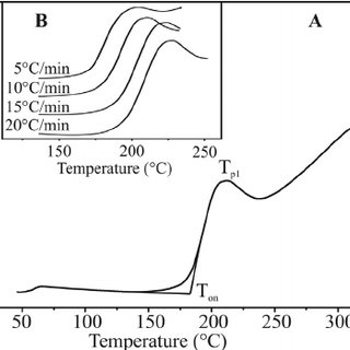 Isothermal DSC oxidation curves of raspberry seed oil at
