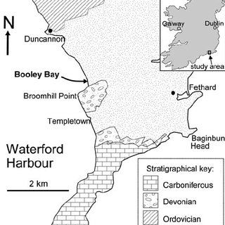 (PDF) Ediacaria booleyi: Weeded from the Garden of Ediacara?