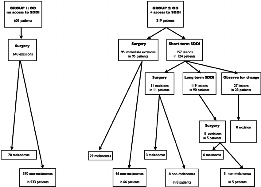 Study flowchart. The evolution of the patients is divided