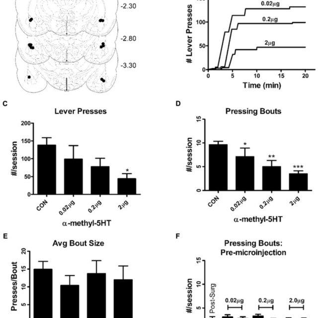 α-methyl-5HT suppresses BLA principal neuron excitability