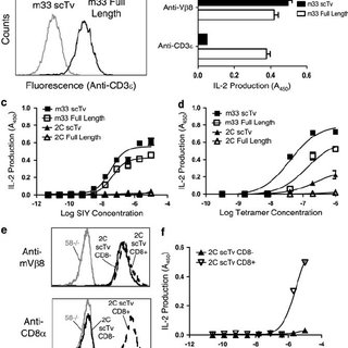 The human high-affinity HIV-specific 868 scTv mediates