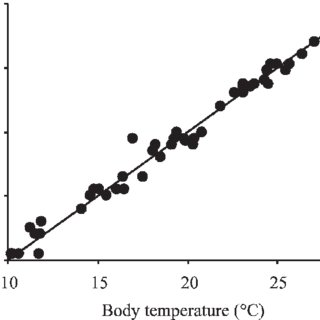 (PDF) Body temperature during low tide alters the feeding