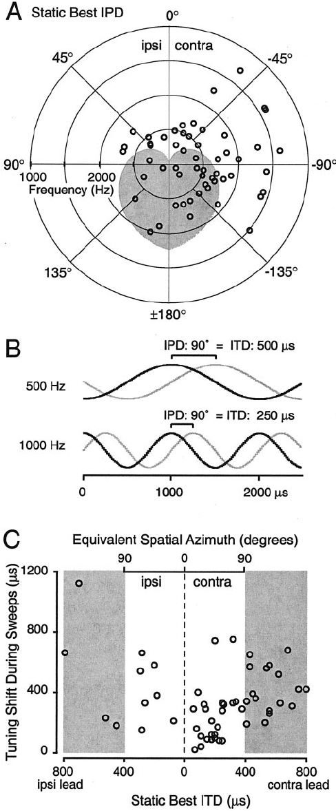 Static best IPDs and shifts in IPD tuning can also be