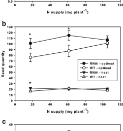 grain yield and seed number and kernel mass of tanam rnai and wt wheat plants [ 646 x 1531 Pixel ]
