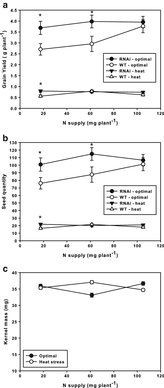 hight resolution of grain yield and seed number and kernel mass of tanam rnai and wt wheat plants