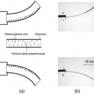 (PDF) Low-voltage polymer-based scanning cantilever for in