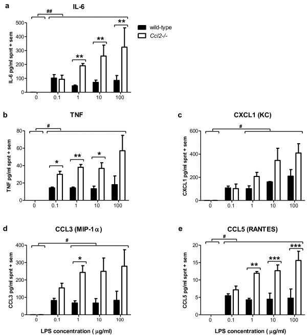Exacerbated cytokine production in Ccl2-/- astrocyte