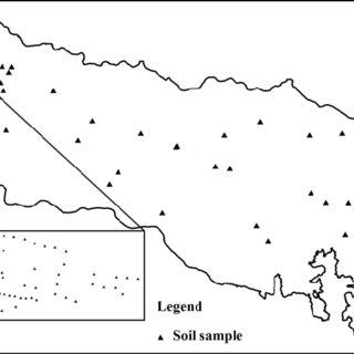 Spatial variation in concentration of calcium, magnesium