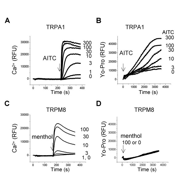 The activation of TRPA1, but not TRPM8, induced Yo-Pro