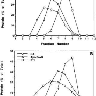 (PDF) Binuclear [2Fe-2S] Clusters in the Escherichia coli