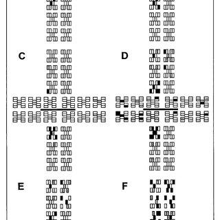 Diagrammatic representation of light leaf spot epidemic