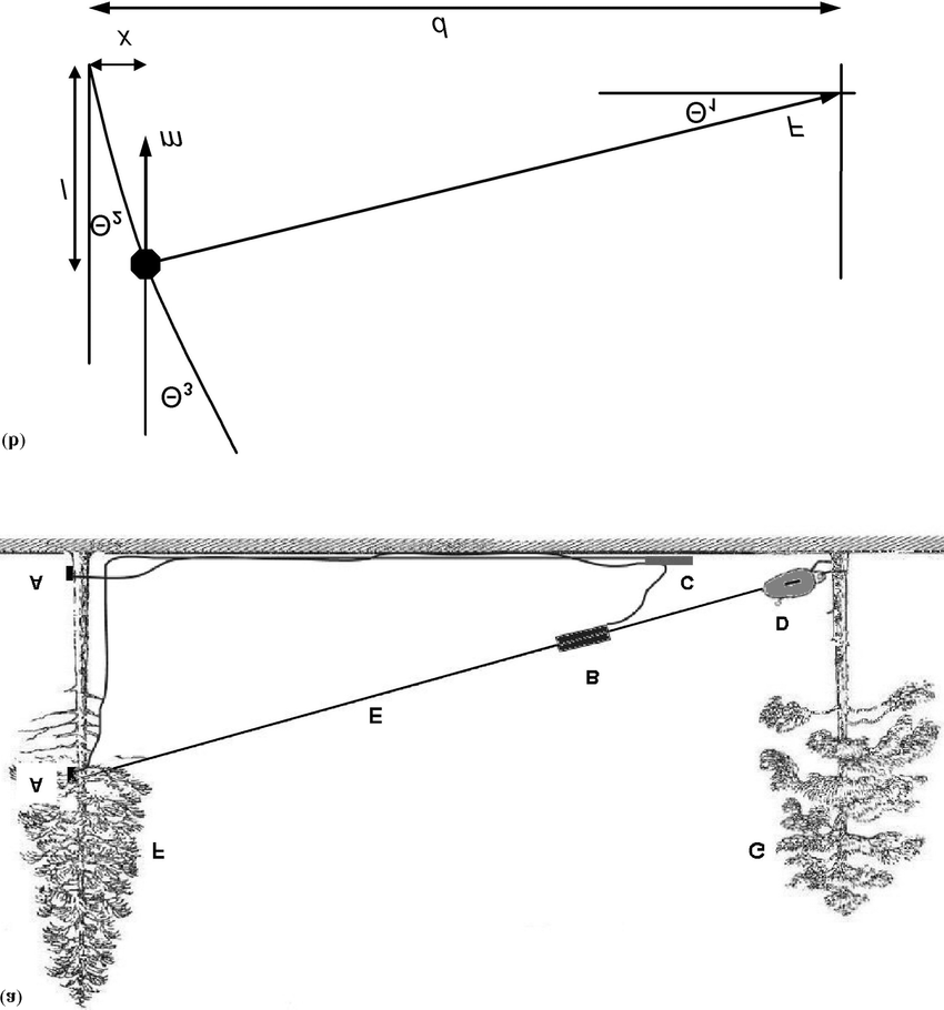 (a) Current tree-pulling method (A) inclinometers fixed at