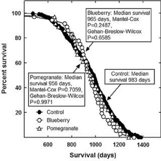 (PDF) Influence on Longevity of Blueberry, Cinnamon, Green