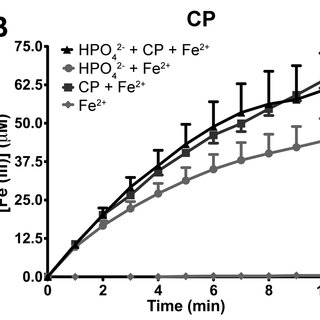 Extracellular sAPP a or CP increases cellular expression