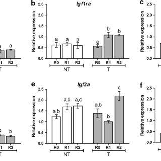 (PDF) GH indirectly enhances the regeneration of transgenic