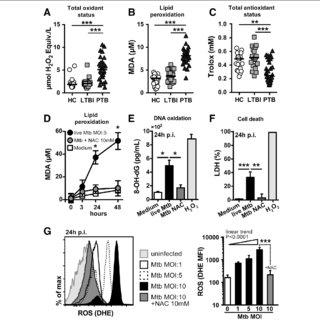 (PDF) N-acetyl-cysteine exhibits potent anti-mycobacterial