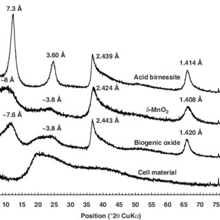(PDF) Structural model for the biogenic Mn oxide produced