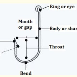 parts of the eyelid diagram apexi power meter wiring hook with one barb which removed from upper structure and fish