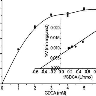 (a) Construction of expression plasmid pET20b(+)-SP(Tat