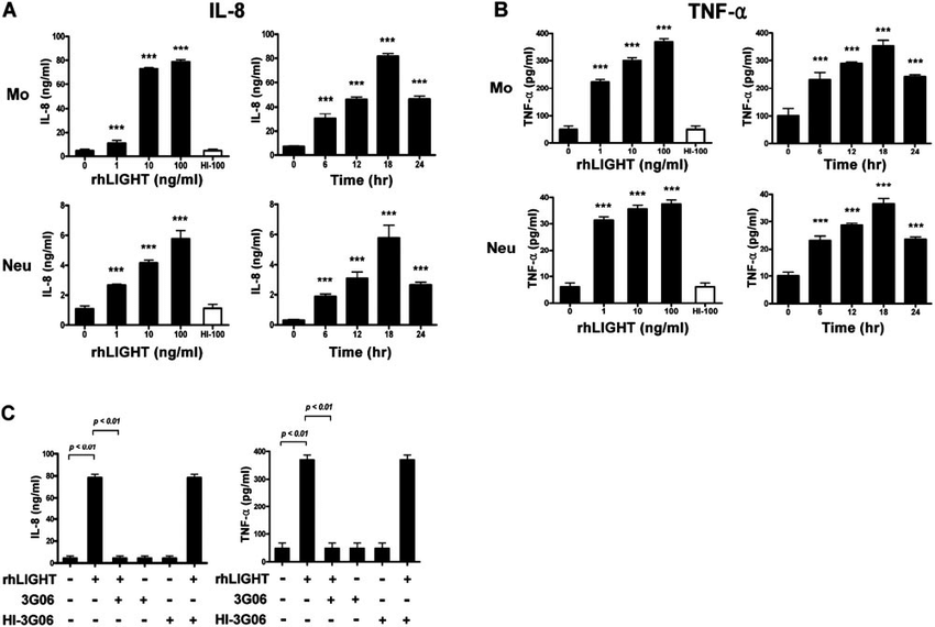 LIGHT/HVEM interaction increases IL-8 and TNF-production