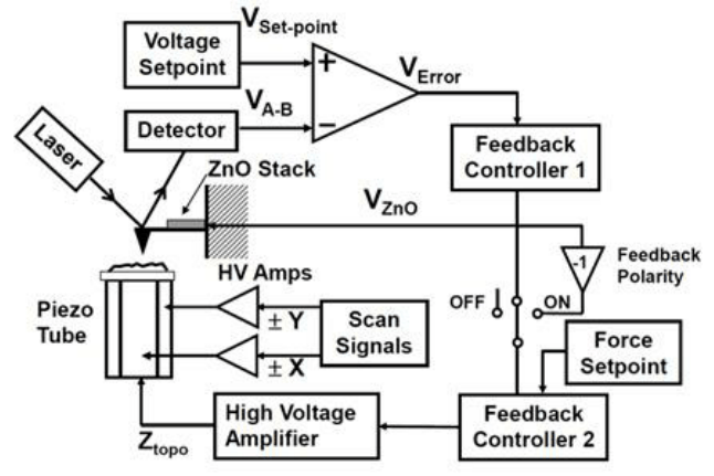 A schematic diagram of the force-feedback HSAFM system