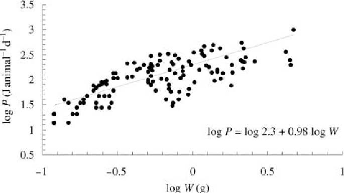 Linear relationship between body mass production energy (P