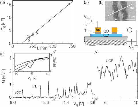 (color online) (a) Side-view schematic of a nanowire
