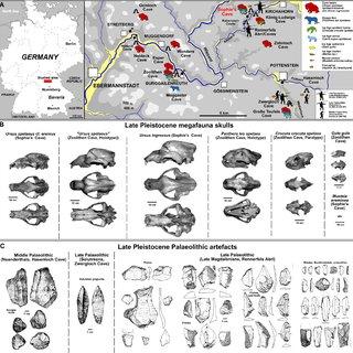 (PDF) DIEDRICH, C. 2013. Ice Age geomorphological Ahorn