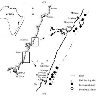 (PDF) Factors influencing fish catch levels on Kenya's