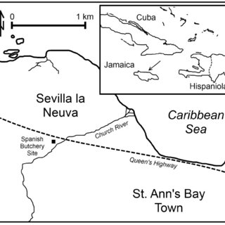 (PDF) Ancient mtDNA Analysis of Early 16 Century Caribbean